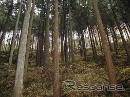 Woods would be Aisin Seiki activity areas