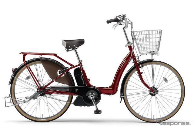 Bicicleta eléctrica asistida Raffini PAS
