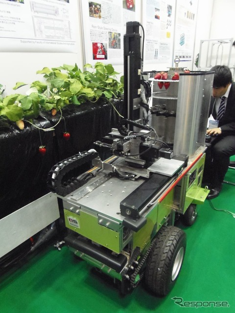 Utsunomiya University a unique self-propelled Strawberry harvesting robot トチオトメ of high quality strawberries without hurting 摘み取れる (Photo 1)