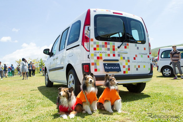 Outing and fun Car Dog Life pet with Kangoo