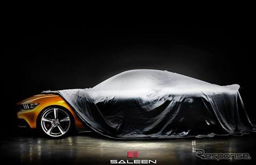 Saleen Mustang 302 notice image