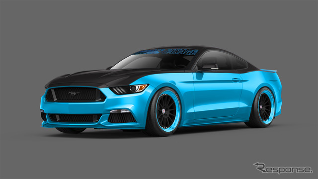 New Ford Mustang to customize the petty's Garage