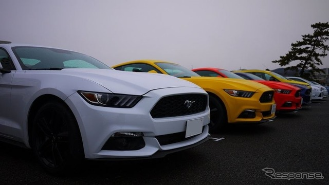 Mustang 50 Years Edition limited production color, appeared 6
