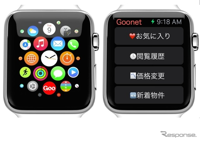 Apple Watch for iPad images