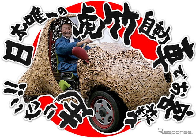 Bamboo electric car project