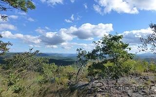 ザンビアの森林保全