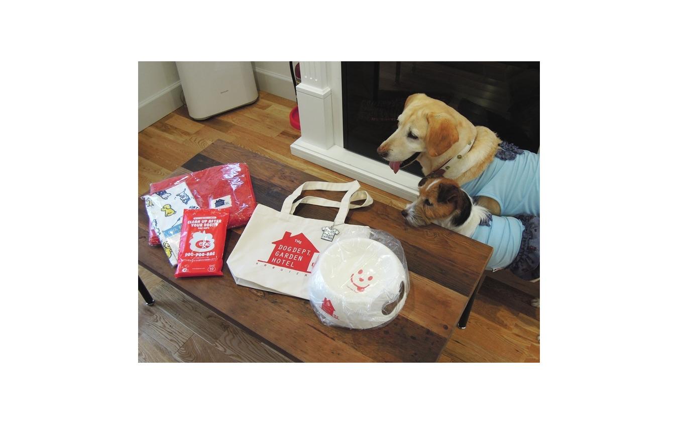 この夏行きたい理想の愛犬同伴宿、ドッグフレンドリーポイント10ヶ条