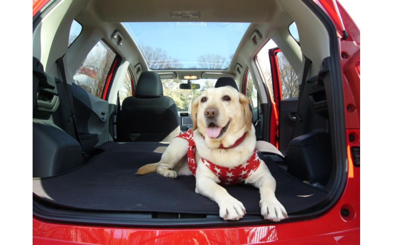 愛犬に優しいクルマの機能&装備