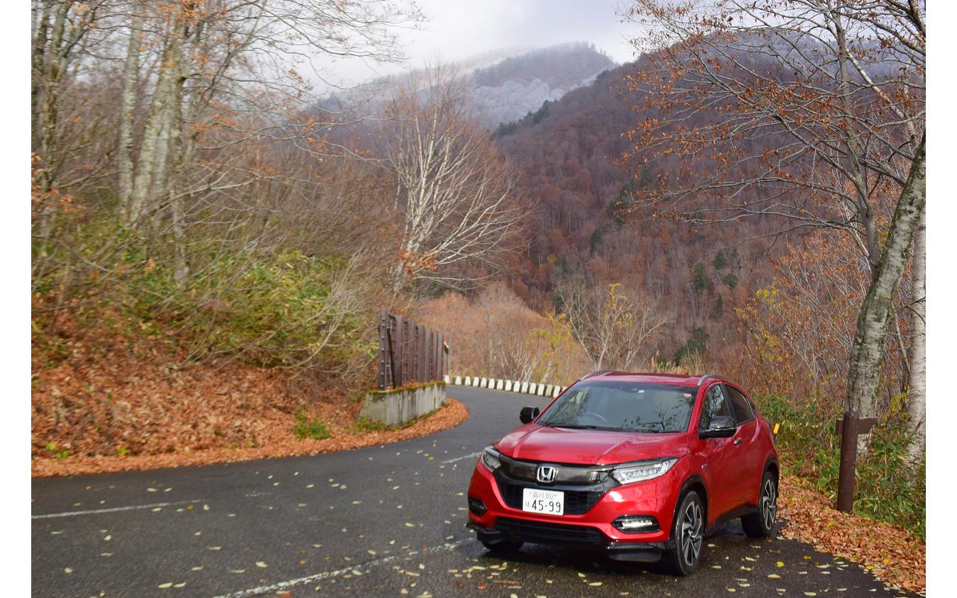 檜枝岐村から奥尾瀬御池に向けてぐんぐん高度を上げる。1週間前は紅葉真っ盛りだったが、すでに落葉していた。