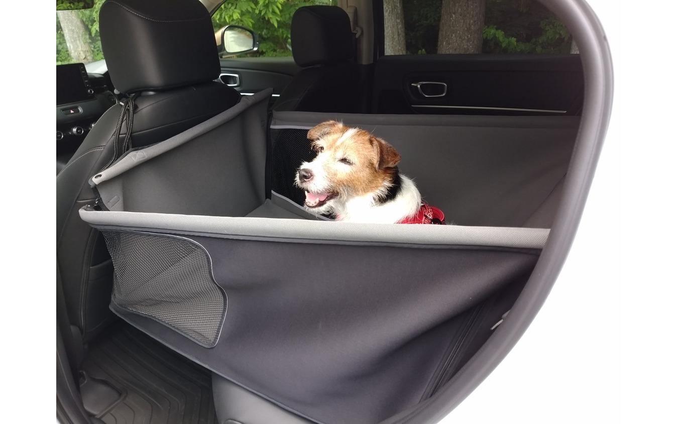 ハイブリッド車愛犬乗車時の盲点