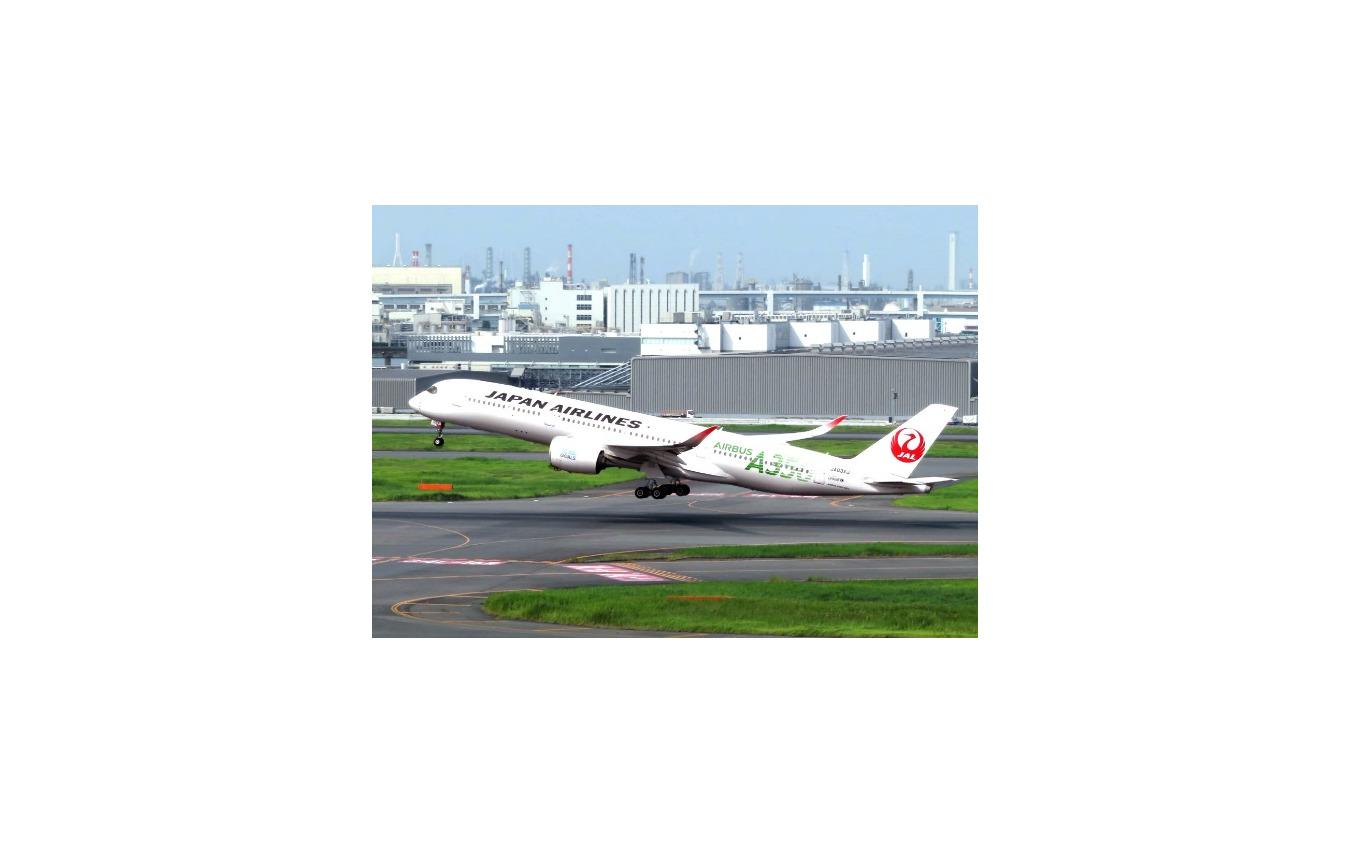 JALグループ国内線往復無料航空券抽選キャンペーン