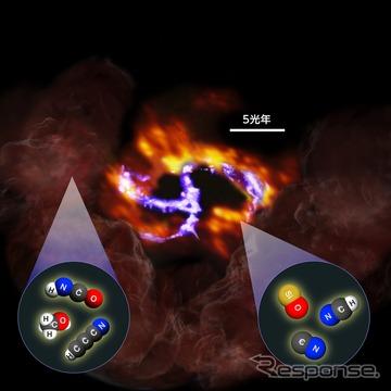 中心核巨大ブラックホールは、電離ガスから成る渦巻き構造「ミニスパイラル」のほぼ中心にあり、周りに「核周円盤」、外側に2つの「巨大分子雲」がある。