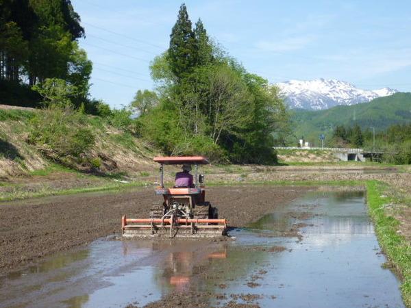 自動運転の有利、不利…米農家への恩恵はあるのか【岩貞るみこの人道車医】