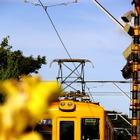 銚子電鉄、デハ1001の引退記念列車を運行…2月27・28日