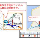 三井住友海上、運転分析アプリに「動物注意」のアラート機能