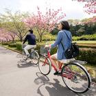 東京海上日動、インターネットで手続きが完了する自転車保険を発売