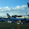 成田国際空港、国際線航空機発着回数など、3項目で過去最高…5月