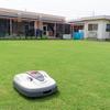 芝生生産・芝生化、ホンダのロボット芝刈機がガイナーレ鳥取の事業に協力