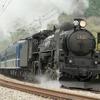 秋田県内の奥羽本線にSL列車、185系は川越線や青梅線、横須賀線などで運行…JR東日本秋の臨時列車