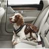ボルボ、犬用シートベルトなどを出展予定…インターペット2019
