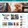 動物・ペット情報満載、新メディア「REANIMAL(リアニマル)」オープン