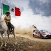 【WRC 第3戦】メキシコ戦は1日早く終了に…優勝はトヨタのオジェ