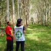 天然ゴムを持続可能な資源に、横浜ゴムがタイで農園の調査を実施