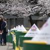 外出を自粛しないのは高齢者? 上野公園お花見行動分析---新型コロナ感染拡大防止