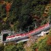 東北や静岡でも観光列車が運休へ…大井川鐡道井川線は4月14日から路線ごと運休に 新型コロナウイルスの影響