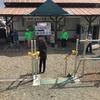 札沼線 北海道医療大学-新十津川間の運行は4月17日限り…緊急事態宣言の全国発出を受けて急遽、繰り上がる