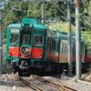 南海の観光列車『天空』が全列車運休に…関空特急も一部が運休 4月24日から 新型コロナ