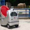 自動運転ロボット『ラクロ』による「オンライン動物園」…千葉市動物公園