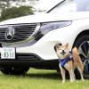メルセデス・ベンツ EQC は乗れば乗るほど気持ちが豊かになっていくEV…愛犬も安心できる快適性