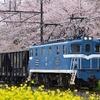 秩父鉄道の貨物専用駅で初イベント…石灰石輸送用貨車20両編成も初入線 10月3・4日