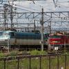 九州の貨物列車から国鉄型機関車を淘汰へ…寝台特急も牽引していたEF510形に交替 2021年度