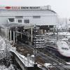 新幹線トンネル湧水で育った「鉄道わさび」を販売、6次産業化めざす