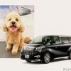 愛犬も車内に、運転手付専用車のサービスを開始…アルファードのリムジン