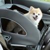 ホンダ、愛犬用アクセサリー装着車を展示予定…アウトドアドッグフェスタ in 八ヶ岳