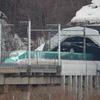 北海道新幹線初、シカが線路に侵入 始発から運行見合せが続く