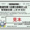 智頭急行、智頭線の1日フリー切符発売…片道通過利用でも260円安