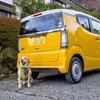ホンダ N-BOXスラッシュ と愛犬の旅…スペースは充分、ペット用アクセの組み合わせも自在