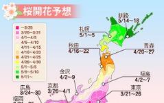 東京と並び、福岡も3月21日に桜開花予想…全国に先駆けて 画像