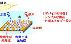 NEDO、人工光合成で水素を製造…混合粉末型光触媒シートを開発 画像
