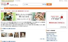 被災したペットと飼い主の再会支援…MSNペットサーチ 画像