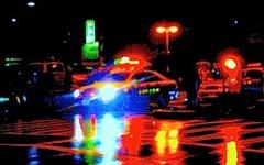 ひき逃げのクルマ、目撃者が高速道の料金所で抑止 画像