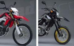 PIAA、ホンダ CRF250専用のLEDフォグランプキットを発売 画像