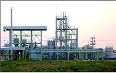 NEDO、タイでバイオエタノールの製造技術を実証 画像