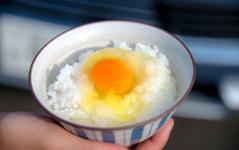 電気自動車で炊いたご飯に最高に合う「卵」を探す旅…三菱 アウトランダーPHEV 画像