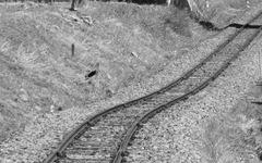 大井川鐵道井川線、土砂流入で一部不通続く 画像
