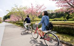 東京海上日動、インターネットで手続きが完了する自転車保険を発売 画像